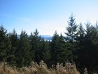 Land for sales at Waterview on 12+ Acres XXX & YYY San Juan Drive  Friday Harbor, Washington 98250 United States