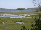 独户住宅 for  sales at 10+ Acres of Nature's Best on Westport River 68 Old Harbor Road  Westport, 马萨诸塞州 02790 美国
