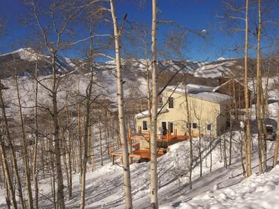 단독 가정 주택 for sales at 59 Cinnamon Mountain Road  Mount Crested Butte, 콜로라도 81225 미국