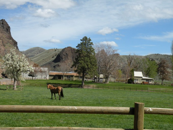 Ferme / Ranch / Plantation for rentals at GM Ranch 42899 Clarno Road Fossil, Oregon 97830 États-Unis