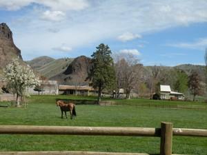 Fazenda / Rancho / Plantação for Locação at GM Ranch 42899 Clarno Road Fossil, Oregon 97830 Estados Unidos