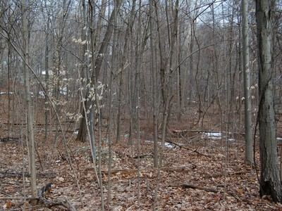Terreno for sales at 5 Acres in a Bucolic Setting 362 Dennytown Road Putnam Valley, New York 10579 Stati Uniti