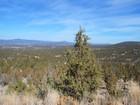 Land for sales at Stunning Views in Prineville Lot 6 Night Hawk Circle Prineville, Oregon 97702 Vereinigte Staaten