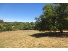 Land for sales at 1020 Borel Ln, Healdsburg, CA 95448   Healdsburg, Kalifornien 95448 Vereinigte Staaten