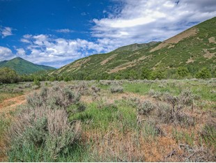 Terreno for sales at The Land of Possibilities 1155 Hobble Creek Canyon Rd Springville, Utah 84663 Stati Uniti