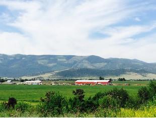 Farm / Ranch / Plantation for sales at Rehbein Ranch 32526 McLeod  Road Arlee, Montana 59821 United States