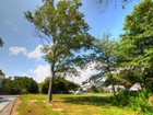 土地,用地 for sales at Premium Corner Lot 100 Minerva Ave Manasquan, 新泽西州 08736 美国