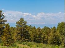 Terreno for sales at 7998 Forest Keep Circle    Parker, Colorado 80134 Estados Unidos