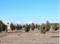 Земля for sales at 13400 SW Riggs Rd    Powell Butte, Орегон 97753 Соединенные Штаты