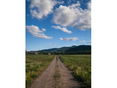 Fazenda / Rancho / Plantação for sales at Flying H Stables Equestrian Center 13699 Mullan Road   Missoula, Montana 59808 Estados Unidos