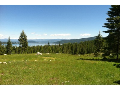 Land for sales at Large 66+ acre estate parcle close to town Lakeshore Drive North Springs Drive  Sagle, Idaho 83860 Vereinigte Staaten