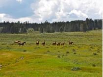 Đất đai for sales at Brazos Summit Ranch TBD US HWY 64   Tierra Amarilla, New Mexico 87575 Hoa Kỳ