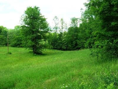 Land for sales at Hartland Acreage 348 Town Farm Hill Road   Hartland, Vermont 05048 United States