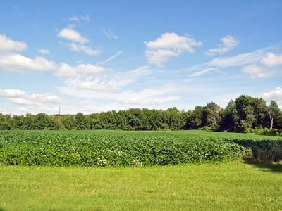 Land for sales at Metamora Township 5631 Baldwin Road  Metamora, Michigan 48371 United States
