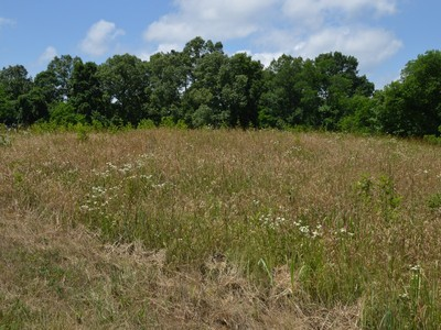 Land for sales at River Ranch Lot 73R River Drive Blaine, Tennessee 37709 United States