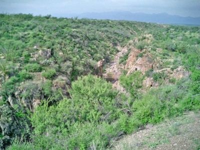 Terrain for sales at Foothills of the Santa Rita Mountains TBD Bull Spring Rd   Tubac, Arizona 85646 États-Unis