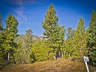 Land for sales at Antler Ridge Homesite 176 Four Point Road Big Sky, Montana 59716 United States