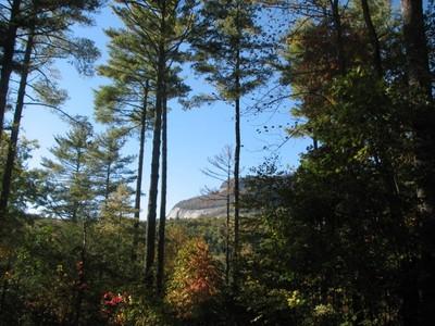 Land for sales at Lot 3 Whiteside Woods Lot 3 Whiteside Cove Road Cashiers, North Carolina 28717 United States
