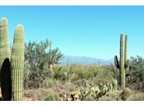 地產 for sales at Amazing Homesite With Breathtaking Panoramic Views 3970 N Avenida Dos Vistas   Tucson, 亞利桑那州 85745 美國