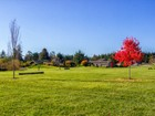 Single Family Home for  sales at 24-Acre Equestrian 269 N Jacob Miller Rd Port Townsend, Washington 98368 United States