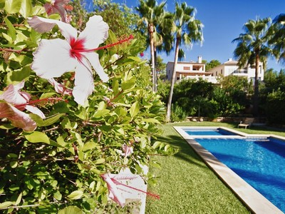 Appartement for sales at 4 bedroom apartment in Port Andratx  Port Andratx, Majorque 07175 Espagne