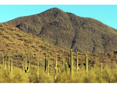 Terreno for sales at Mountain Preserve Custom Estate Lot Cave Creek, AZ 36440 E Rackensack Rd #4  Cave Creek, Arizona 85331 Stati Uniti