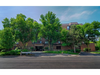 Condominio for sales at 1140 Old Mill Rd. 1140 Old Mill Rd. 203F Hinsdale, Illinois 60521 Stati Uniti