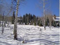 Terrain for sales at Woodrun 1, Lot 4 1005 Wood Road   Snowmass Village, Colorado 81615 États-Unis