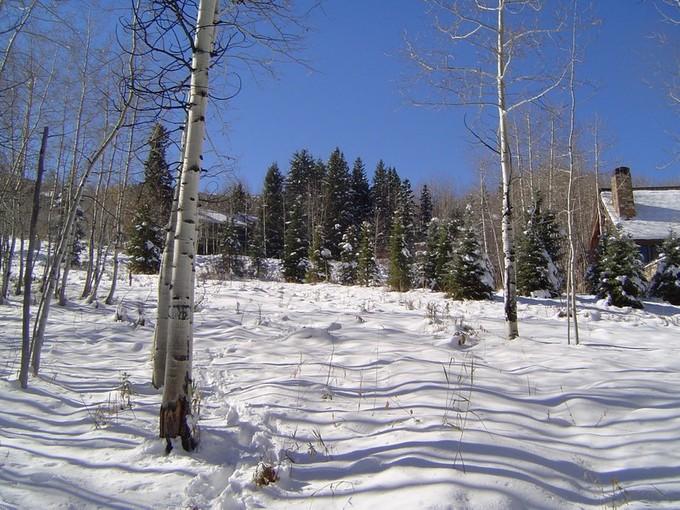 土地 for sales at Woodrun 1, Lot 4 1005 Wood Road   Snowmass Village, コロラド 81615 アメリカ合衆国