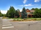 Adosado for sales at Gorgeous Willits Townhome 634 Evans Court  Basalt, Colorado 81621 Estados Unidos