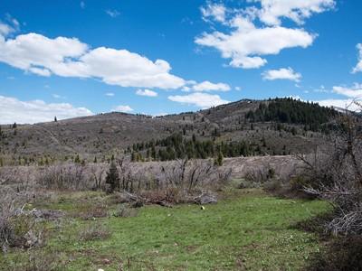 Land for sales at Woods of Parleys Ln Lot #42 8660 Parleys Ln Lot 42 Park City, Utah 84098 United States