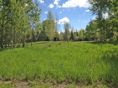 Land for sales at Rare Cluster Lot with Mountain Views 2980 N Aspen Wood Lane West Bank North, Wyoming 83014 United States