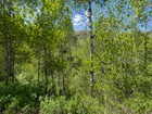Land for sales at 20 Acre Estate Lot in Sportsman's Paradise 1872 Unassigned   Woodland, Utah 84036 United States