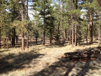 Land for sales at 2.5 Acres Lot 2900 Monk Lane Crescent Lake, Oregon 97425 United States