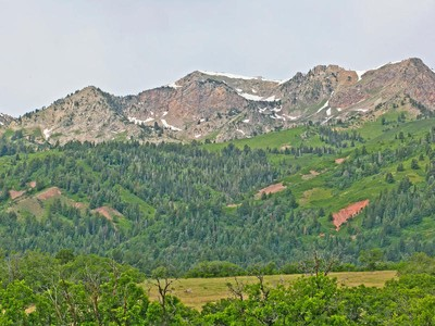 Land for sales at Pristine, Private, Stunning Alpine Setting I 84 Exit HWY 187 Morgan, Utah 84050 United States