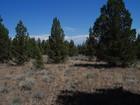 Land for sales at Lot 24 SE Ridgeview Road  Prineville, Oregon 97754 Vereinigte Staaten