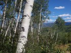 Land for sales at Ridge Run III Lot 60 12 East Ridge Road  Snowmass Village, Colorado 81615 United States