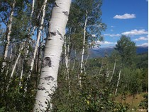 Terrain for sales at Ridge Run III Lot 60 12 East Ridge Road   Snowmass Village, Colorado 81615 États-Unis