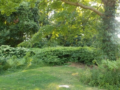 Terreno for sales at Approved Building Lot in Pine Orchard 138 Pine Orchard Road Branford, Connecticut 06405 Estados Unidos