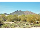 Terreno for  sales at Over An Acre With Great Views Of Black Mountain In Cave Creek 662X E Red Range Way #0   Cave Creek, Arizona 85331 Stati Uniti