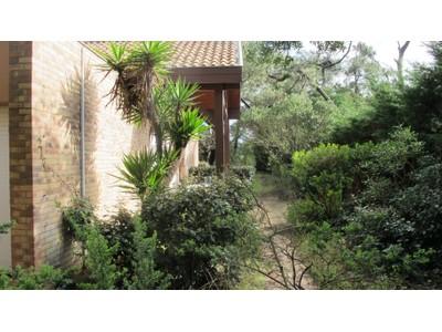 一戸建て for sales at CAP FERRET, Villa à rénover d'environ 220m2 sur 1500m2 de terrain  Other Aquitaine, アキテーヌ 33970 フランス