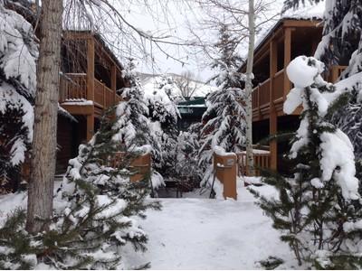 Condomínio for sales at Fulton 914 Water Avenue Unit 1 Aspen, Colorado 81611 Estados Unidos