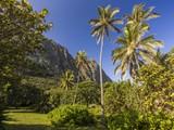 Property Of Pahonu
