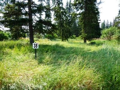 地產 for sales at Glacier Ranch 496 Forest Edge Trail Kalispell, 蒙大拿州 59901 美國