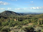 Land for sales at Spectacular Homesite In Saguaro Forest At Desert Mountain 42619 N 98th Place #307 Scottsdale, Arizona 85262 Vereinigte Staaten