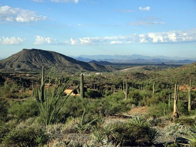 Terreno for sales at Spectacular Homesite In Saguaro Forest At Desert Mountain 42619 N 98th Place #307 Scottsdale, Arizona 85262 Stati Uniti