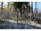 Land for  sales at Pines Lot 44 461 Pine Crest Drive Snowmass Village, Colorado 81615 United States