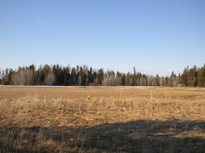 Terrain for sales at Beautiful Views 1180 Voerman Road Whitefish, Montana 59937 États-Unis