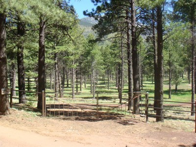 獨棟家庭住宅 for sales at Stunning Twenty-Five Acre Parcel 0 Nf-418  Flagstaff, 亞利桑那州 86001 美國
