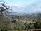 Farm / Ranch / Plantation for sales at GREAT ATTRIBUTES! 1255 Tierra Redonda Road Bradley, California 93426 United States
